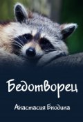 "Обложка книги ""Бедотворец"""