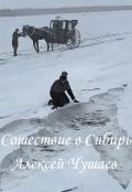 """Обложка книги """"Сошествие в Сибирь"""""""