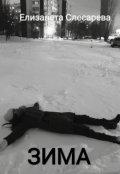 "Обложка книги ""Зима """