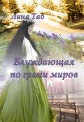"""Обложка книги """"Блуждающая по грани миров"""""""