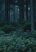 """Обложка книги """"Тайны затерянного леса """""""