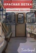 """Обложка книги """"Зеркальный попутчик"""""""