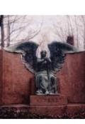 """Обложка книги """"Статуя ангела"""""""