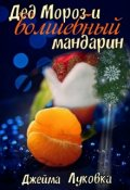 "Обложка книги ""Дед Мороз и волшебный мандарин"""
