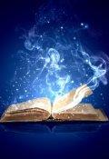 """Обложка книги """"Из дневника Вуали"""""""