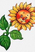 """Обложка книги """"Земное солнышко"""""""