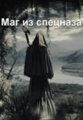 "Обложка книги ""Маг из спецназа"""
