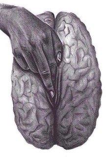 "Книга. ""Трахание мозга (романтическая версия)"" читать онлайн"