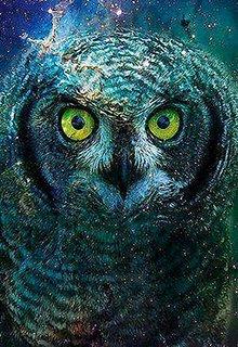 """Книга. """"Глаза совы"""" читать онлайн"""