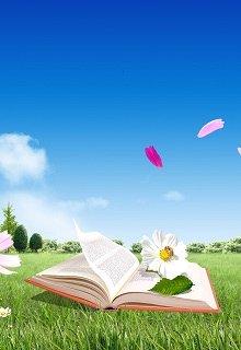 """Книга. """"Отзывы на мои романы """" читать онлайн"""