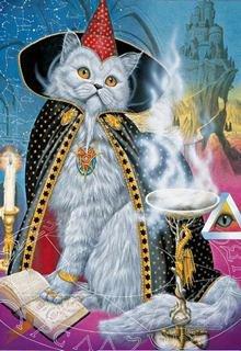 "Книга. ""Кот"" читать онлайн"