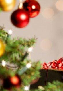 "Книга. ""Настоящий Дед Мороз"" читать онлайн"