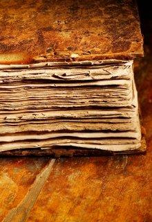 """Книга. """"Дневник Рпгшника"""" читать онлайн"""