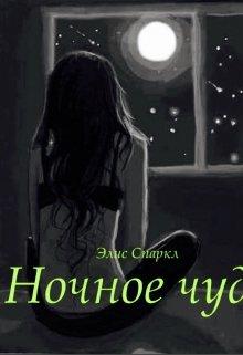 "Книга. ""Ночное чудо "" читать онлайн"