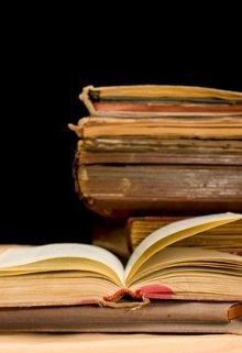 """Книга. """"Сафьяновая тетрадь «девочек Лисси»"""" читать онлайн"""