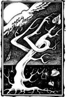 """Книга. """"Человек Ветра: Родиться до конца"""" читать онлайн"""