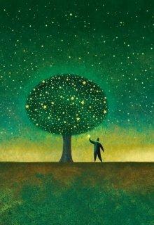 "Книга. ""Волшебник, дерево, звезда"" читать онлайн"