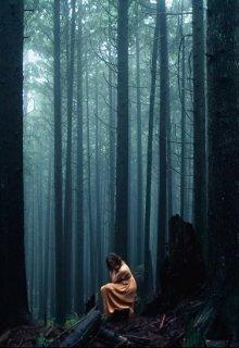 """Книга. """"По ту сторону леса"""" читать онлайн"""