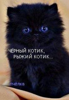 """Книга. """"Чёрный котик,рыжий котик..."""" читать онлайн"""