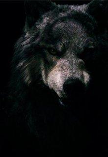 """Книга. """"Влюбленный волк"""" читать онлайн"""