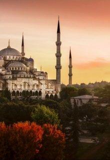 """Книга. """"Стамбульские ночи"""" читать онлайн"""