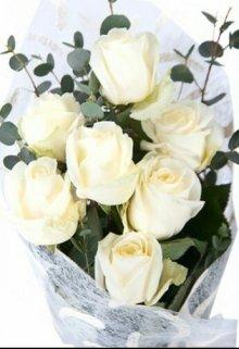 """Книга. """"Белые розы"""" читать онлайн"""