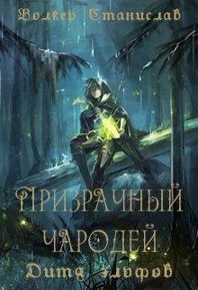 """Книга. """"Призрачный чародей. Дитя эльфов"""" читать онлайн"""