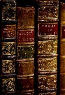 """Книга. """"Полиция - не лучший вариант"""" читать онлайн"""