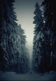 "Книга. ""Моя зима"" читать онлайн"