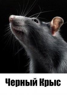 """Книга. """"Черный Крыс"""" читать онлайн"""