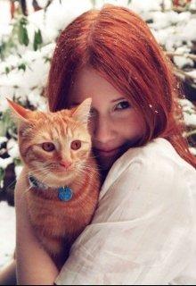 """Книга. """"О котах и о жизни"""" читать онлайн"""