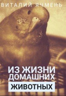 """Книга. """"Из жизни домашних животных."""" читать онлайн"""