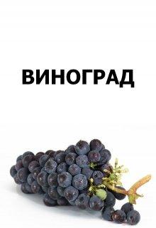 """Книга. """"Виноград"""" читать онлайн"""