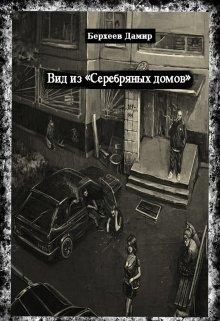 """Книга. """"Вид из """"Серебряных домов"""""""" читать онлайн"""