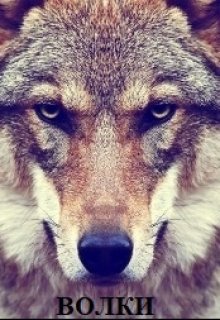 "Книга. ""Волки"" читать онлайн"