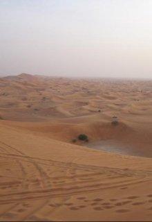 """Книга. """"Бедуины: с верблюдов на тойоты"""" читать онлайн"""