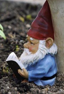 """Книга. """"Не чтимый покровитель."""" читать онлайн"""