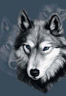 """Книга. """"Волк без имени."""" читать онлайн"""