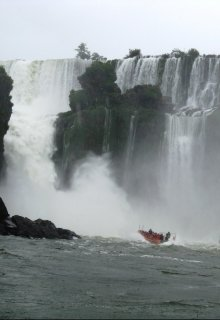 "Книга. ""Аргентина. Игуасу - чудо природы"" читать онлайн"