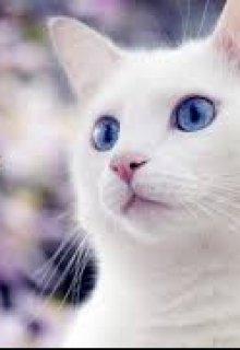"""Книга. """"Белая кошка"""" читать онлайн"""