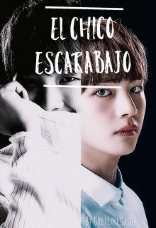 """Libro. """"El Chico Escarabajo"""" Leer online"""