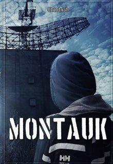 """Книга. """"Монток"""" читать онлайн"""
