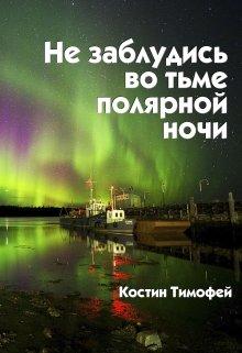 """Книга. """"Не заблудись во тьме полярной ночи"""" читать онлайн"""