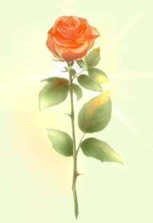 """Книга. """"Пророк, огонь и роза. Ищущие"""" читать онлайн"""