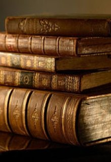 """Книга. """"Книга из прошлого"""" читать онлайн"""