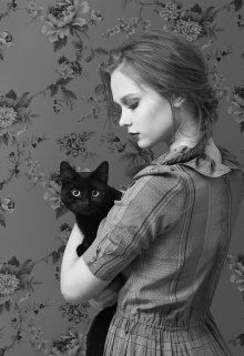 """Книга. """"Она и её кот. Любимец семьи"""" читать онлайн"""