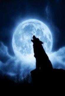 """Книга. """"Не пугайте серого волка"""" читать онлайн"""