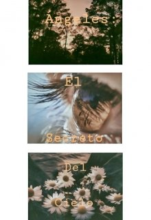 """Libro. """"angeles: el secreto de cielo"""" Leer online"""