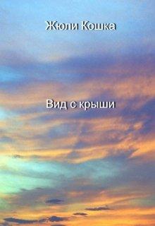 "Книга. ""Вид с крыши"" читать онлайн"