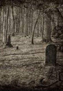 """Книга. """"Спустіла могила"""" читати онлайн"""